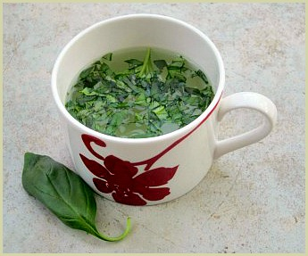 picture of basil tea made with fresh basil leaves