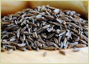 picture of black cumin seeds