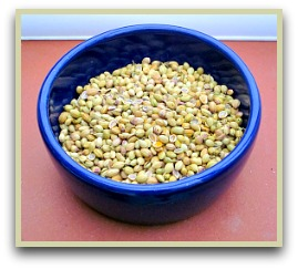 Picture of cilantro seeds in a bowl