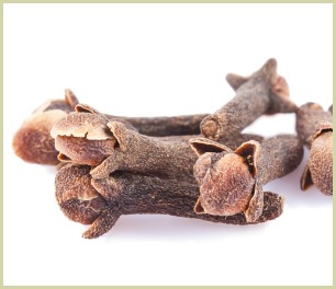picture of whole cloves