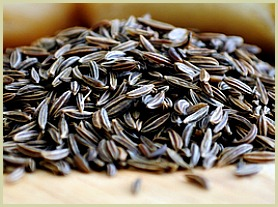 picture of black cummin seeds