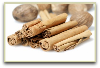 The Uses of Cinnamon | Culinary, Ceremonial and Medicinal Benefits