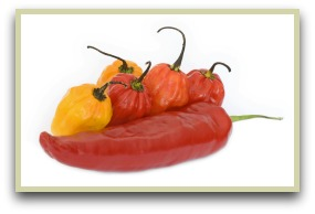 Picture of paprika peppers