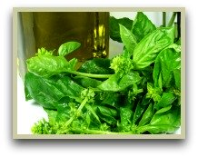 Picture of fresh basil and basil oil
