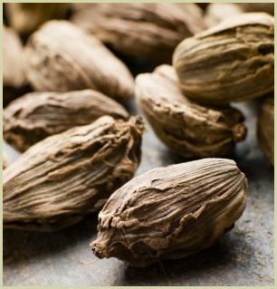 picture of black cardamom pods